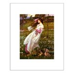 Windflowers / Dachshund Small Poster