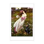 Windflowers / Doberman Mini Poster Print