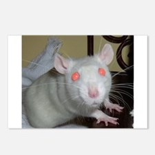 White Rat Postcards (Package of 8)