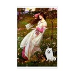 Windflowers / Eskimo Spitz #1 Mini Poster Print
