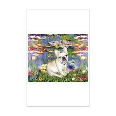 Lilies / Fr Bulldog (f) Posters