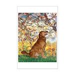 Spring & Golden (#12) Mini Poster Print