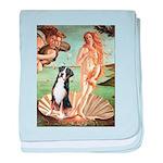 Venus / GSMD baby blanket