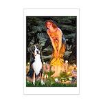 Fairies / GSMD Mini Poster Print
