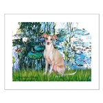 Lilies / Ital Greyhound Small Poster