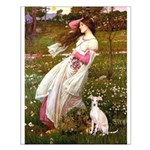 Windflowers / Ital Greyhound Small Poster