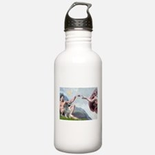 Creation/ Keeshond Water Bottle