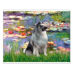 Lilies / Keeshond Posters