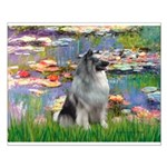 Lilies / Keeshond Small Poster