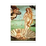Venus / Lhasa Apso #9 Mini Poster Print
