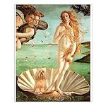 Venus / Lhasa Apso #9 Small Poster