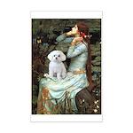 Ophelia's Maltese Mini Poster Print