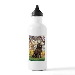Spring / Newfoundland Water Bottle