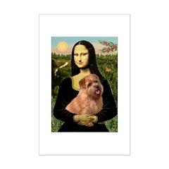 Mona / Norfolk Terrier Posters
