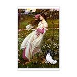 Windflowers & Papillon Mini Poster Print
