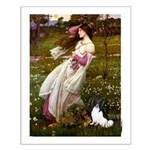 Windflowers & Papillon Small Poster