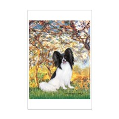 Spring & Papillon Posters