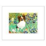 Irises / Papillon Small Poster