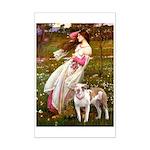 Windflowers / Pitbull Mini Poster Print