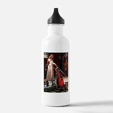 Accolade/4 Pomeranians Water Bottle