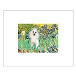 Irises / Poodle (w) Small Poster