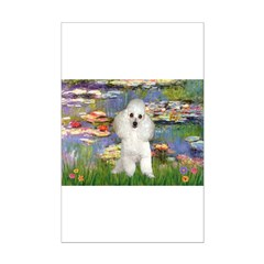 Lilies /Poodle (w) Posters