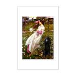 Windflowers / Poodle (BLk-ST) Mini Poster Print
