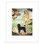 Venus / PWD (#2) Small Poster