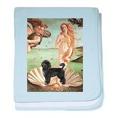 Venus / PWD (#2) baby blanket