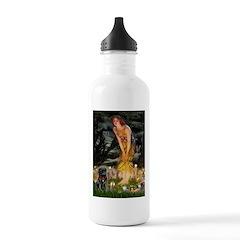 Fairies & Black Pug Water Bottle