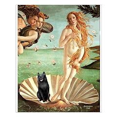 Venus / Schipperke #5 Posters
