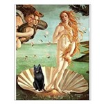 Venus / Schipperke #5 Small Poster