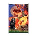 Mandolin / Schipperke #5 Mini Poster Print