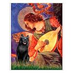 Mandolin / Schipperke #5 Small Poster