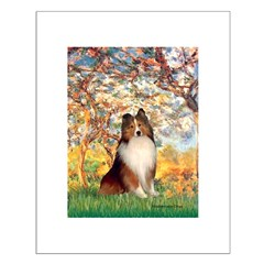 Spring / Sheltie (#1) Posters