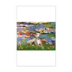 Lilies & Whippet Posters