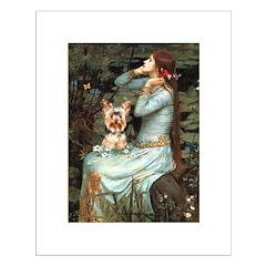 Ophelia's Yorkie (17) Posters