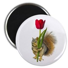 Squirrel Red Tulip Magnet