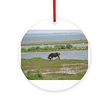 Wild Pony Ornament (Round)