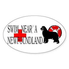 Swim Near A Newfoundland Decal
