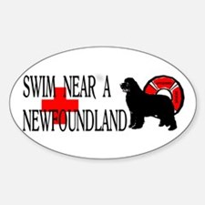 Swim Near A Newfoundland Decal