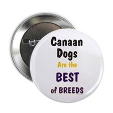 Canaan Dog Best Breed Button