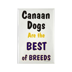 Canaan Dog Best Breed Rectangle Magnet (100 pack)
