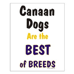 Canaan Dog Best Breed Posters