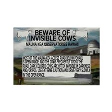 Invisible Cows Sign Rectangle Magnet (10 pack)