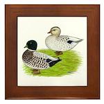 Snowy Call Ducks Framed Tile