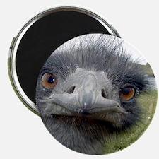 emu 01 Magnets