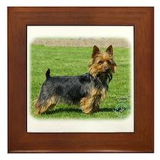 Australian Terrier 9R044D-70 Framed Tile