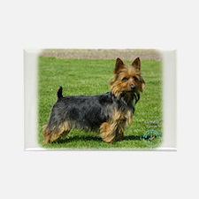 Australian Terrier 9R044D-70 Rectangle Magnet (10