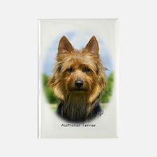 Australian Terrier 9R044D-19 Rectangle Magnet (10